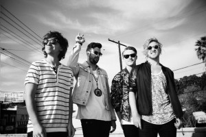 thegriswolds_photo