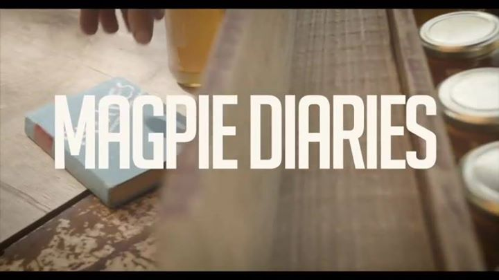Magpie Diaries live Stag & Hunter Newcastle