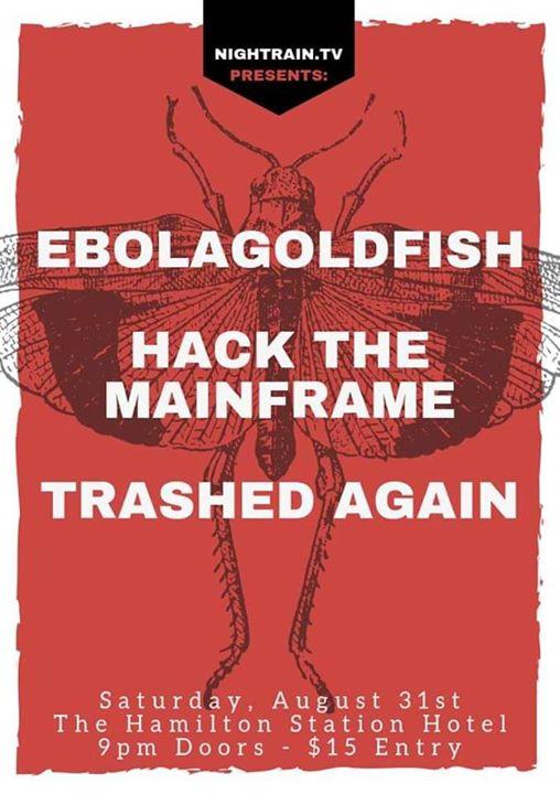 Ebolagoldfish, Hack the Mainframe, Trashed Again