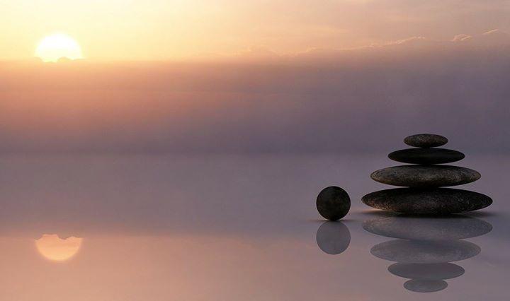 The Stillness Project