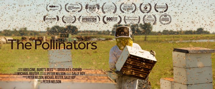 The Pollinators: Documentary Screening and Q&A