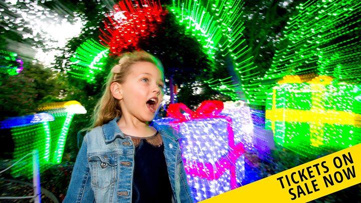 Christmas Lights Spectacular Part 2