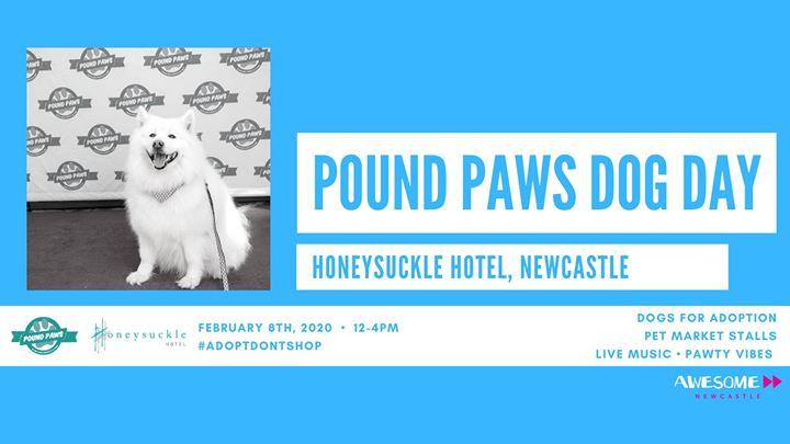 Pound Paws Dog Day at Honeysuckle Hotel