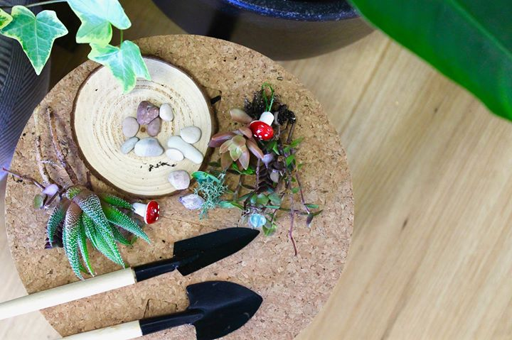 DIY Kids Terrarium Workshop
