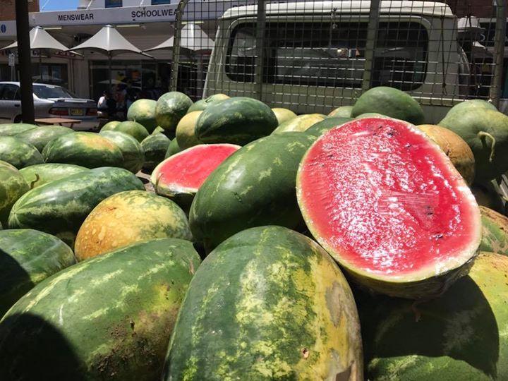 20th February – Slow Food Earth Market Maitland