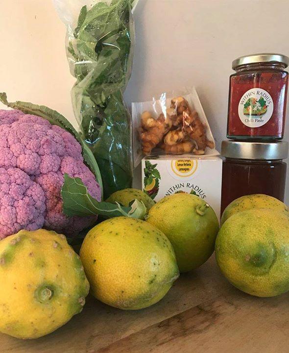 2nd July – Slow Food Earth Market Maitland