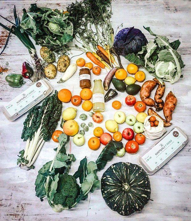 16th July – Slow Food Earth Market Maitland