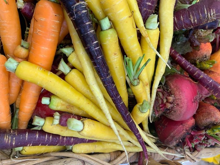 15th October – Slow Food Earth Market Maitland