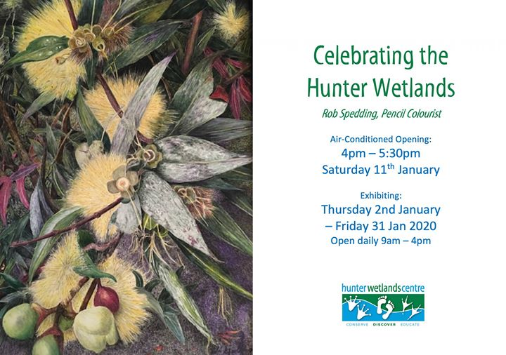Celebrating the Hunter Wetlands – Rob Spedding Exhibition