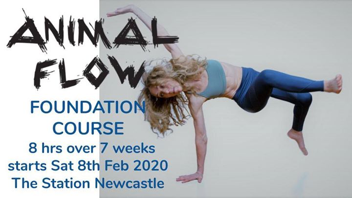 Animal Flow® Foundation Course