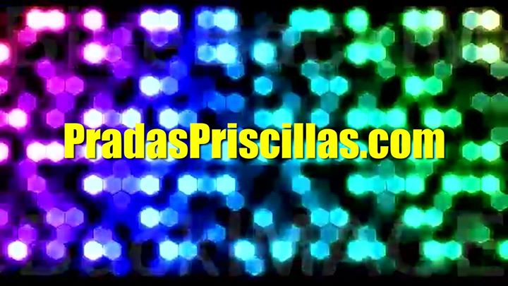Prada's Priscillas at Civic Theatre Newcastle