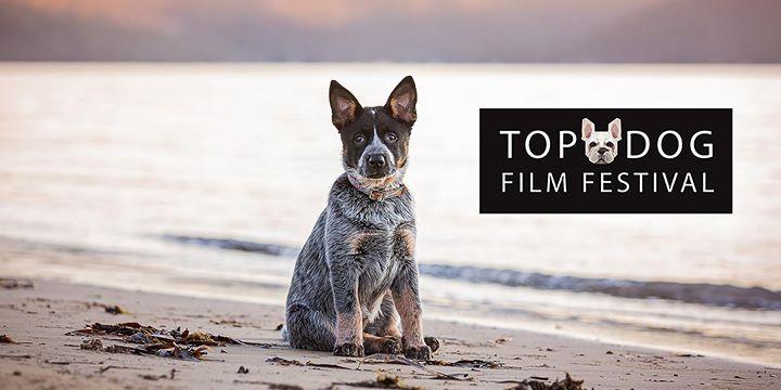Top Dog Film Festival – Newcastle