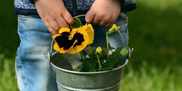 Grow! Gardening Fun at Merewether Community Garden -October School Holidays
