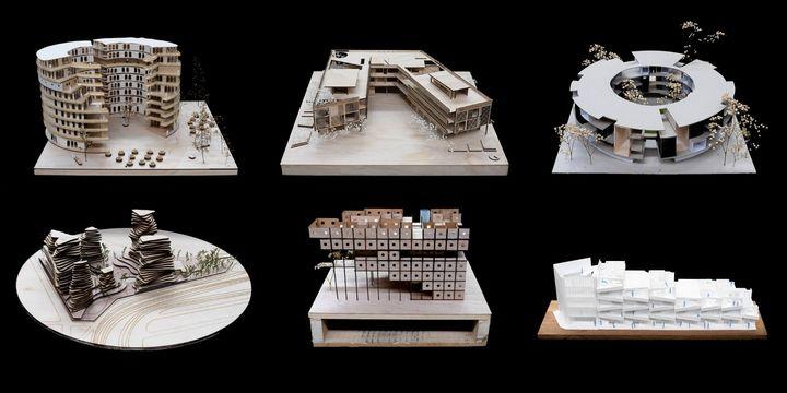 Radical Domesticities | Undergraduate Architecture Exhibition