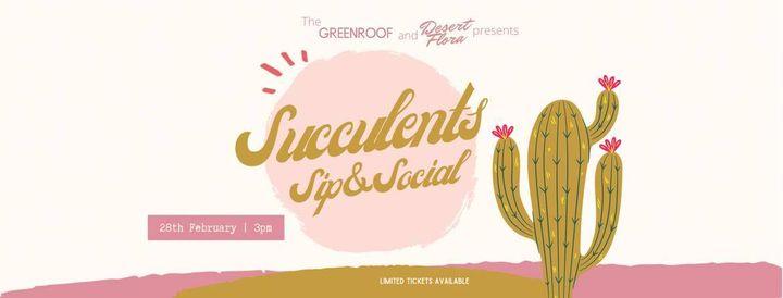 Succulents Sip & Social