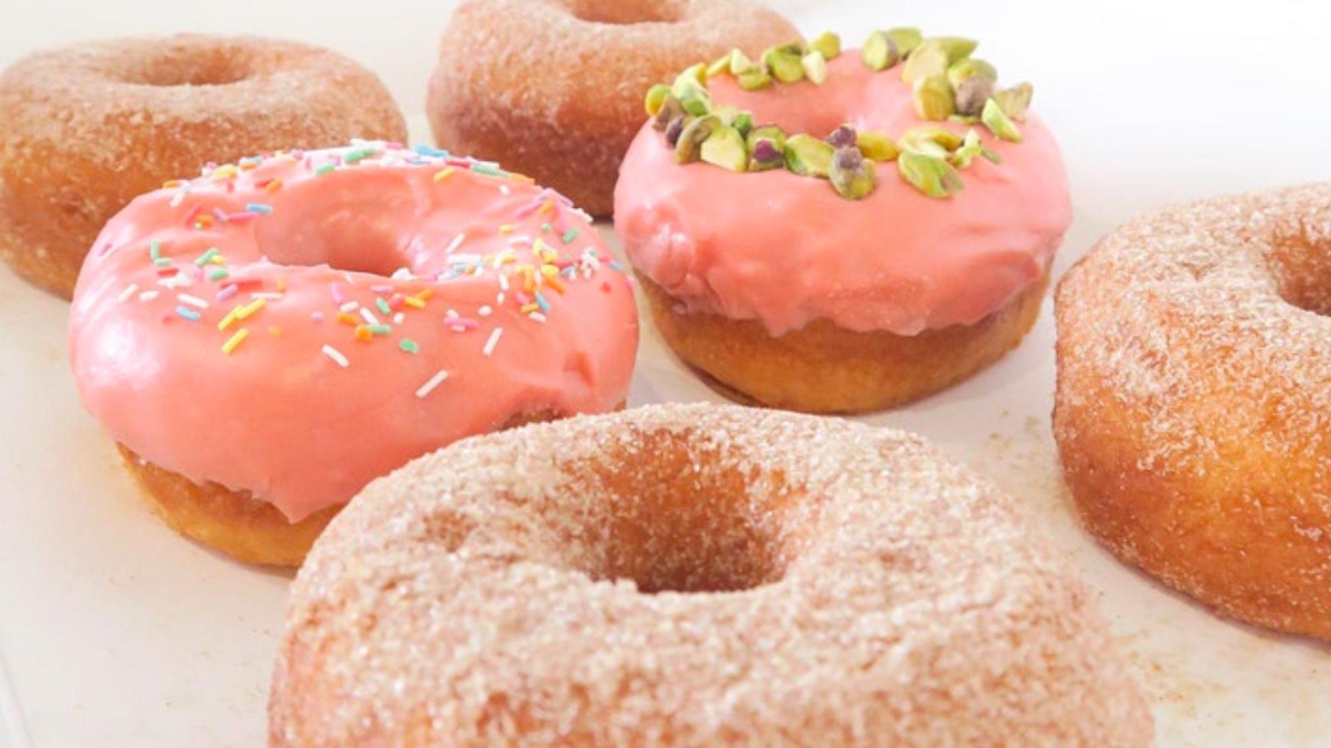 Doughheads' Vegan & Gluten Free Taste Testings