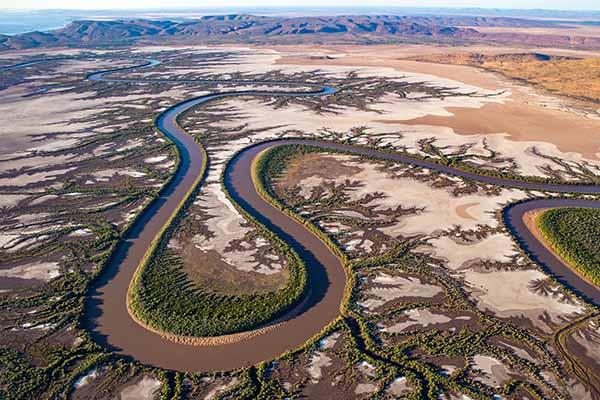 ACO: River
