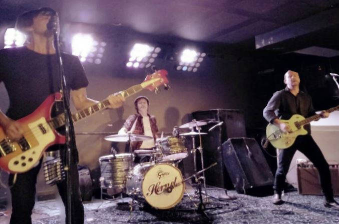 Hornet, Live Music
